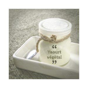 bien être naturopathie, yaourts végétaux